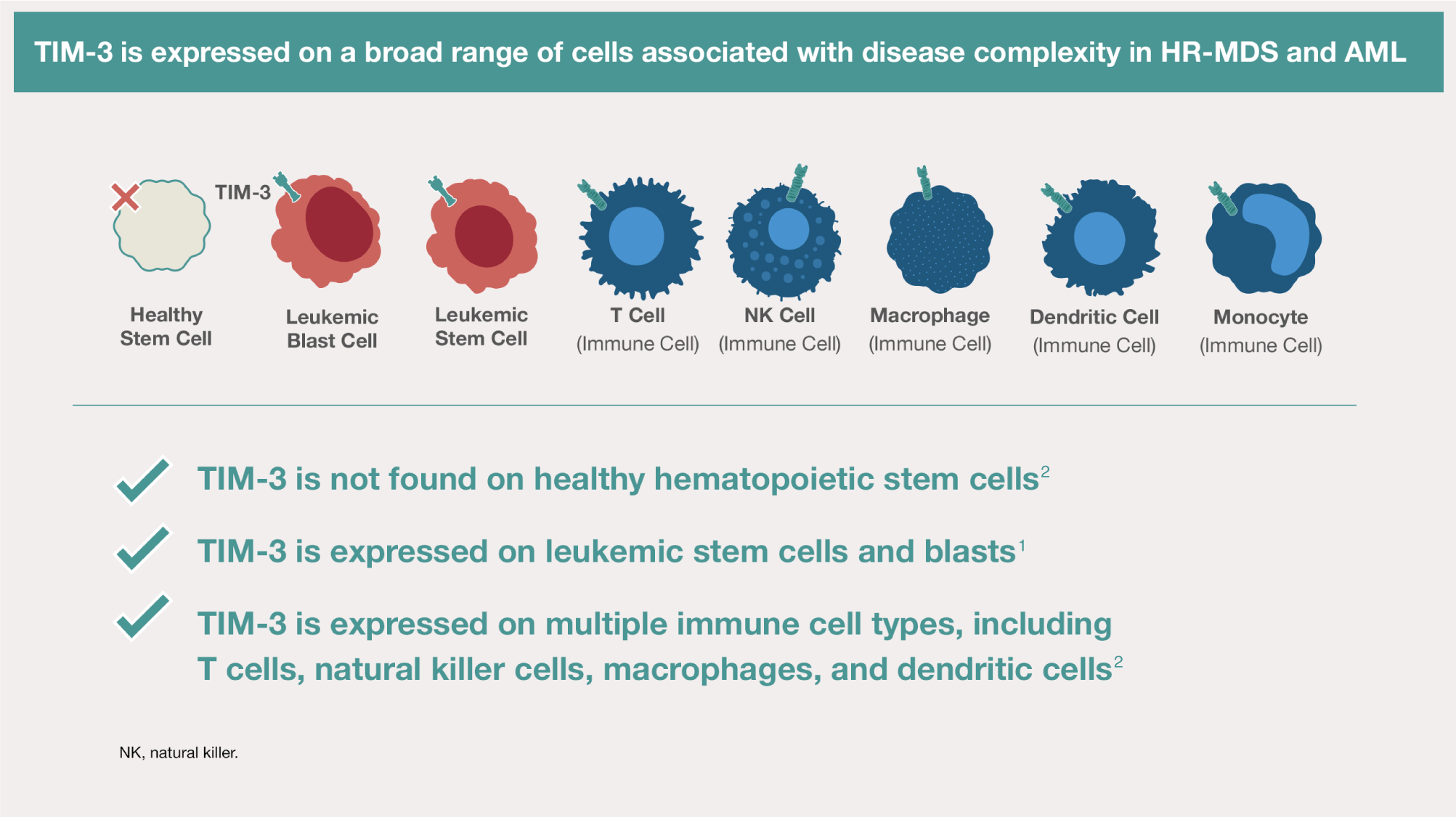 TIM-3 is expressed on multiple immune cell types, including T cells, natural killer cells, macrophages, and DCs