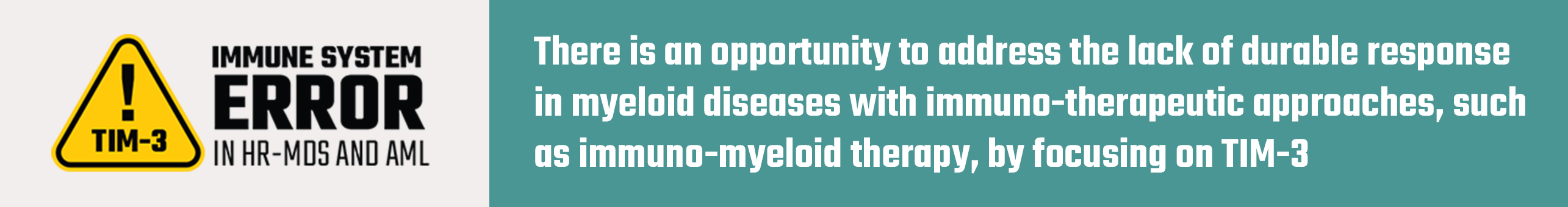 There is an opportunity to address the lack of durable response in myeloid diseases with immuno-therapeutic approaches, such as immuno-myeloid therapy, by focusing on TIM-3
